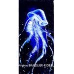 Méduse Bleue 20x40