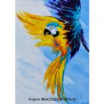 Perroquet Jaune et Turquoise -50x70