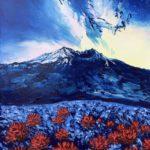 Ciel Étoilé sur Volcan & Champs de Fleurs-